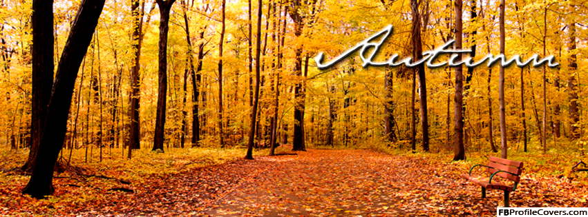 Autumn Facebook Timeline Cover Picture