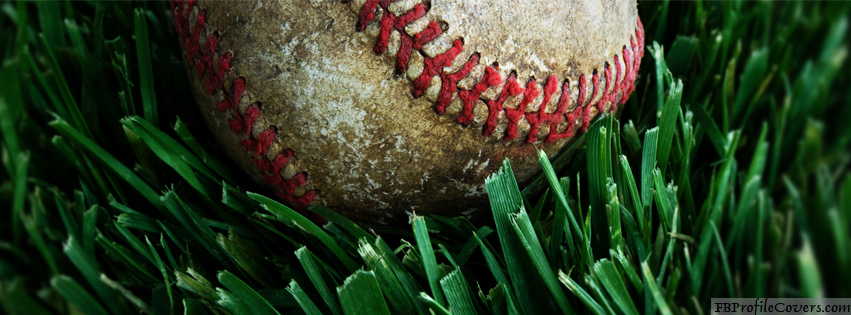 Baseball On Grass Facebook Timeline Cover
