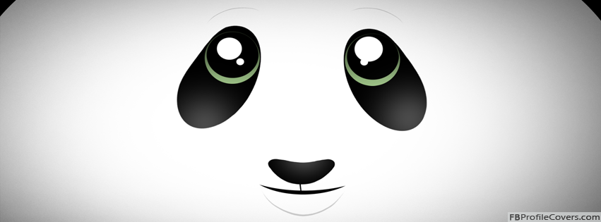 Cute Panda Facebook Timeline Profile Cover Photo Art - Timeline Banner