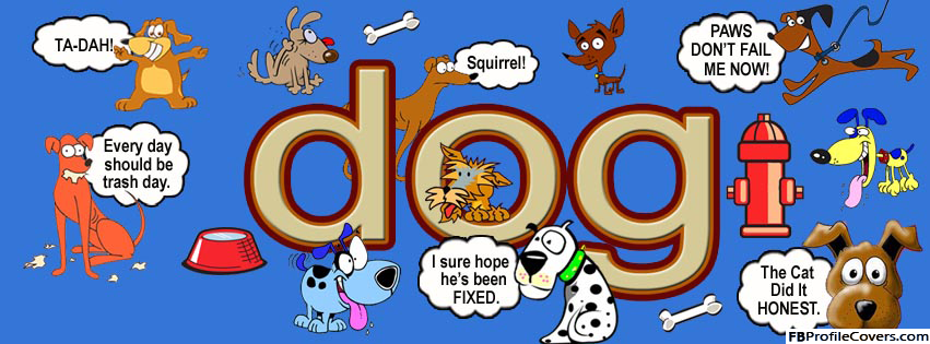 Dog Facebook Timeline Cover Picture