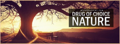 Drug Of Choice Nature