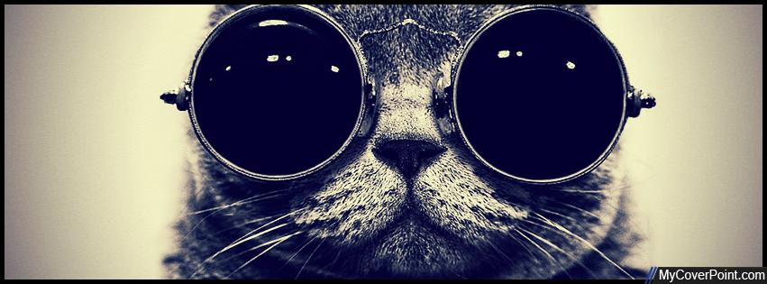 Glasses Cat Facebook Timeline Cover