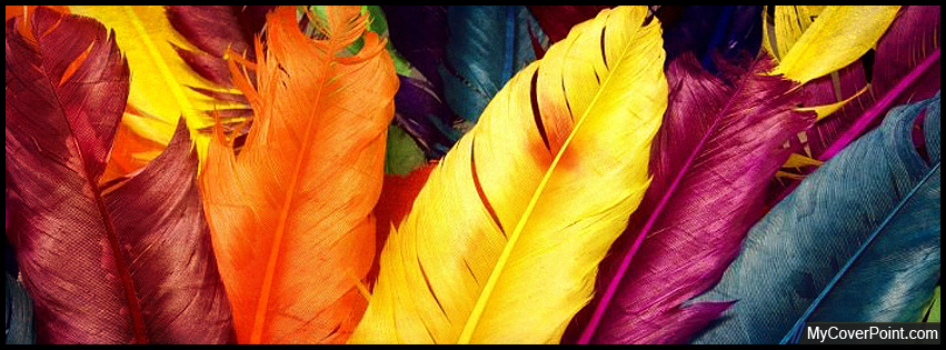 Rainbow Feathers Facebook Cover