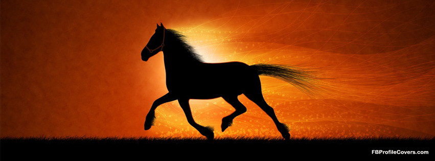 Running Horse FB cover, facebook timeline profile cover