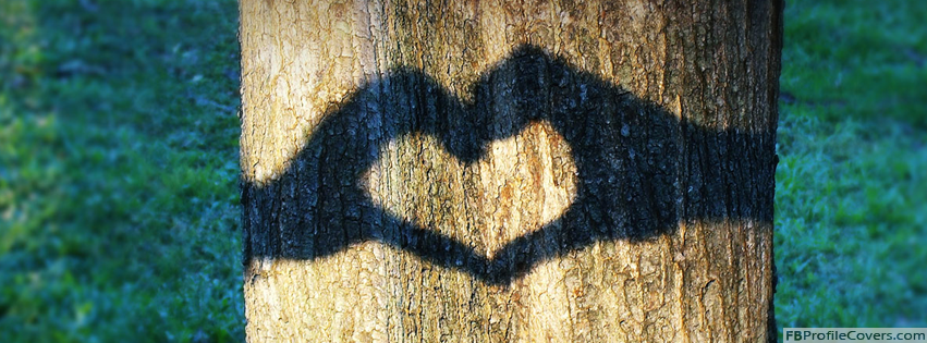 Tree Shadow Heart Facebook Timeline Cover Photo