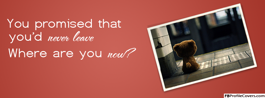 Where are you now sad teddy Facebook timeline cover