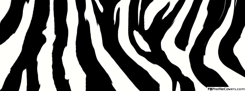 Zebra Print Facebook Timeline Cover Photo