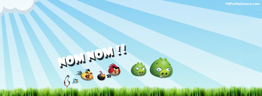 angry birds facebook cover, fb cover angry birds game