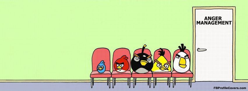 Angry birds funny Facebook cover for fb timeline