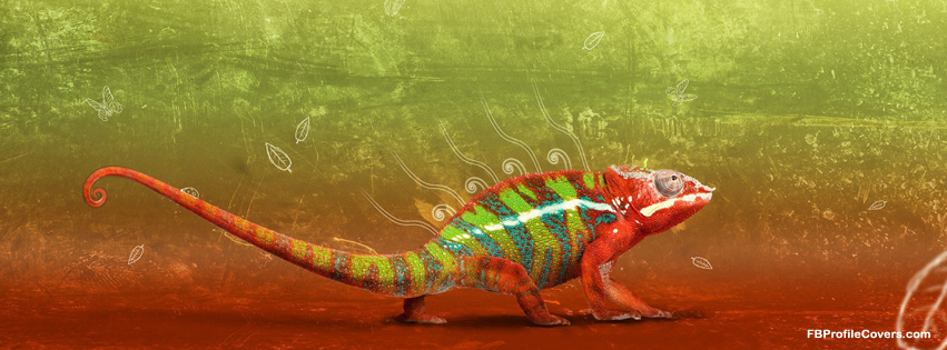 colorful creature facebook cover, fb timeline covers
