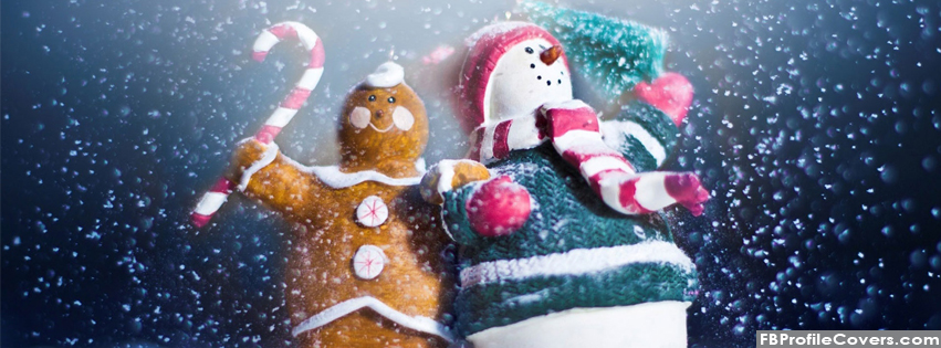 Cute Snowman Facebook Timeline Cover
