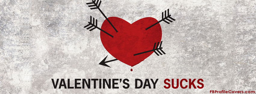 valentines day sucks facebook timeline cover